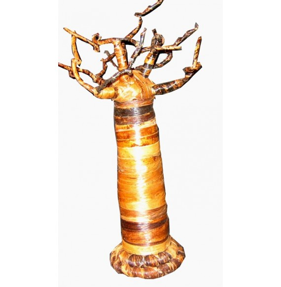 Baobab 40 cm