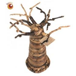 Baobab 22 cm